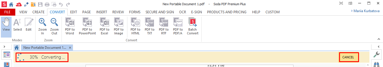 How to Convert from PDF to Word – Soda PDF